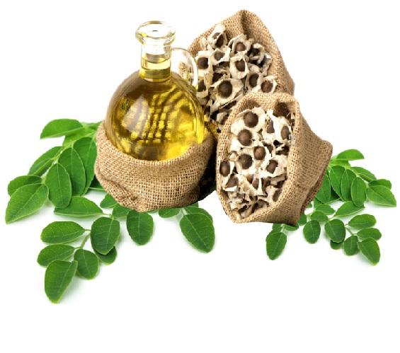Moringa oil, organic 50ml