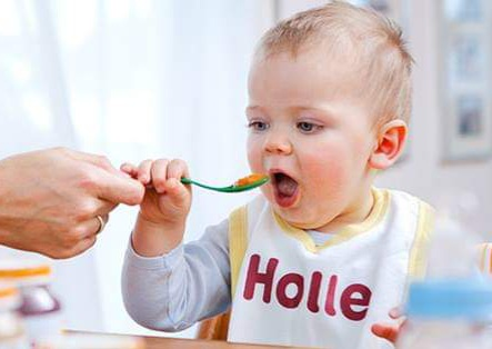 Holle Bio Baby meal, various