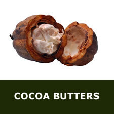 Cocoa butters